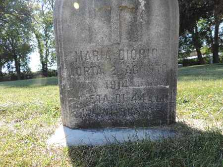 DIORIO, MARIA - Franklin County, Ohio | MARIA DIORIO - Ohio Gravestone Photos