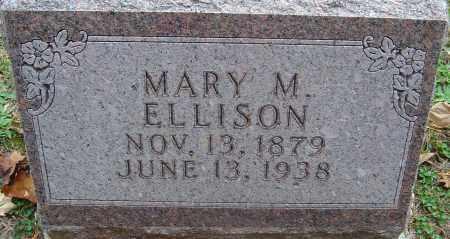 ELLISON, MARY M - Franklin County, Ohio | MARY M ELLISON - Ohio Gravestone Photos