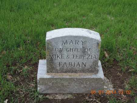 FABIAN, MARY - Franklin County, Ohio | MARY FABIAN - Ohio Gravestone Photos