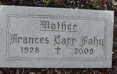 FAHY, FRANCES CARR - Franklin County, Ohio | FRANCES CARR FAHY - Ohio Gravestone Photos