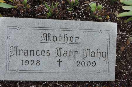 FAHY, FRANCES - Franklin County, Ohio | FRANCES FAHY - Ohio Gravestone Photos