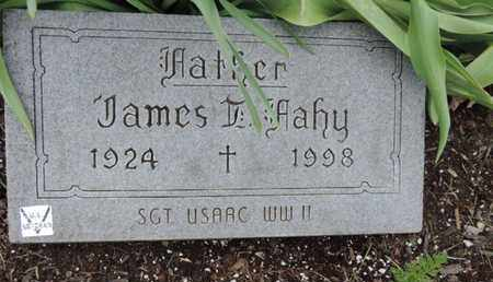 FAHY, JAMES - Franklin County, Ohio | JAMES FAHY - Ohio Gravestone Photos