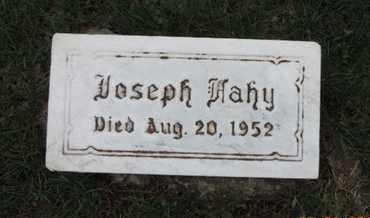 FAHY, JOSEPH - Franklin County, Ohio | JOSEPH FAHY - Ohio Gravestone Photos