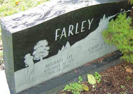 FARLEY, MICHAEL JAY - Franklin County, Ohio | MICHAEL JAY FARLEY - Ohio Gravestone Photos