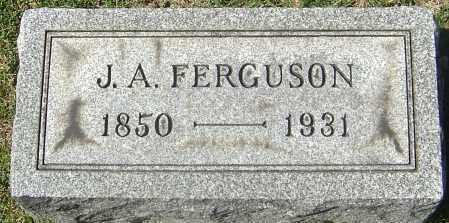 FERGUSON, JOSEPH ALBIN - Franklin County, Ohio | JOSEPH ALBIN FERGUSON - Ohio Gravestone Photos