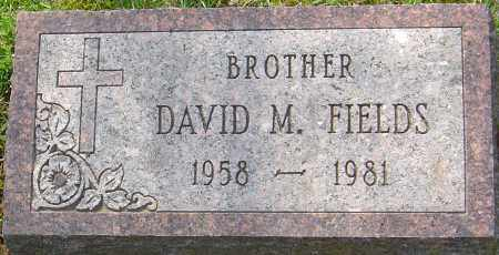 FIELDS, DAVID MARSHALL - Franklin County, Ohio | DAVID MARSHALL FIELDS - Ohio Gravestone Photos