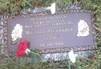 FITCH, MICHAEL ALEXANDER - Franklin County, Ohio | MICHAEL ALEXANDER FITCH - Ohio Gravestone Photos