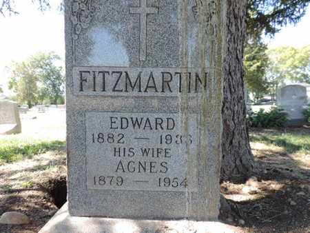 FITZMARTIN, AGNES - Franklin County, Ohio | AGNES FITZMARTIN - Ohio Gravestone Photos