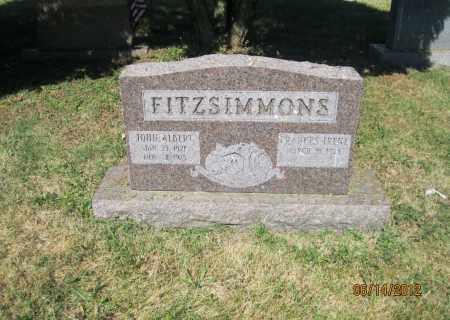 FITZSIMMONS, JOHN ALBERT - Franklin County, Ohio | JOHN ALBERT FITZSIMMONS - Ohio Gravestone Photos