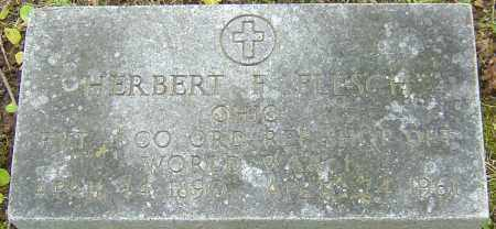 FLESCH, HERBERT - Franklin County, Ohio | HERBERT FLESCH - Ohio Gravestone Photos