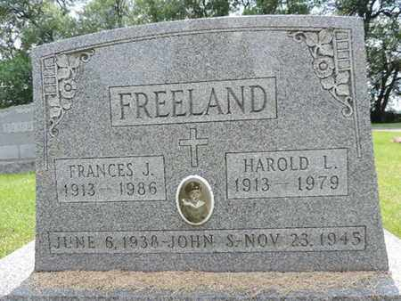 FREELAND, FRANCES J. - Franklin County, Ohio | FRANCES J. FREELAND - Ohio Gravestone Photos
