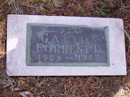 GATTON, FORREST B. - Franklin County, Ohio | FORREST B. GATTON - Ohio Gravestone Photos