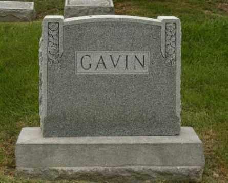 GAVIN, EDWIN - Franklin County, Ohio | EDWIN GAVIN - Ohio Gravestone Photos