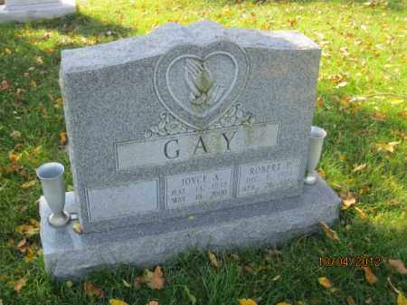 GAY, JOYCE ANN - Franklin County, Ohio | JOYCE ANN GAY - Ohio Gravestone Photos