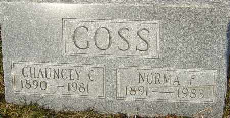 GOSS, CHAUNCEY C - Franklin County, Ohio | CHAUNCEY C GOSS - Ohio Gravestone Photos