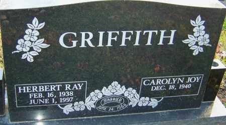 GRIFFITH, HERBERT RAY - Franklin County, Ohio | HERBERT RAY GRIFFITH - Ohio Gravestone Photos