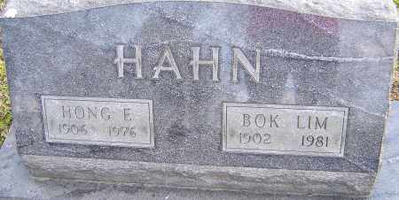HAHN, BOK LIM - Franklin County, Ohio | BOK LIM HAHN - Ohio Gravestone Photos