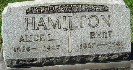 HAMILTON, ALICE L - Franklin County, Ohio | ALICE L HAMILTON - Ohio Gravestone Photos