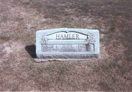 HAMLER, ELIZA V. - Franklin County, Ohio | ELIZA V. HAMLER - Ohio Gravestone Photos