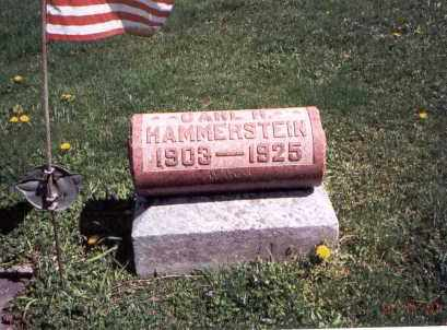 HAMMERSTEIN, CARL - Franklin County, Ohio | CARL HAMMERSTEIN - Ohio Gravestone Photos