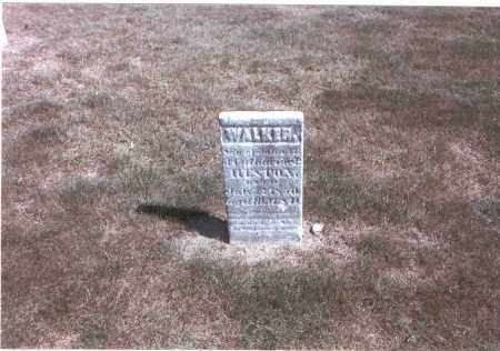 HESTON, WALKER - Franklin County, Ohio | WALKER HESTON - Ohio Gravestone Photos