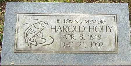 HOLLY, HAROLD - Franklin County, Ohio | HAROLD HOLLY - Ohio Gravestone Photos