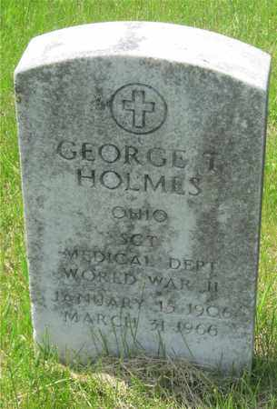 HOLMES, GEORGE T. - Franklin County, Ohio | GEORGE T. HOLMES - Ohio Gravestone Photos