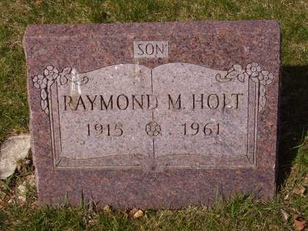 HOLT, RAYMOND M. - Franklin County, Ohio | RAYMOND M. HOLT - Ohio Gravestone Photos