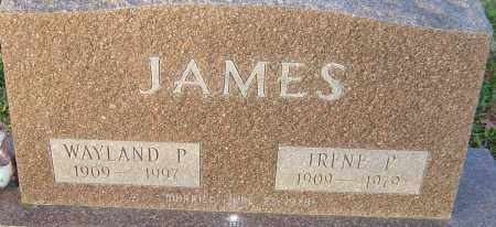 JAMES, IRENE - Franklin County, Ohio | IRENE JAMES - Ohio Gravestone Photos