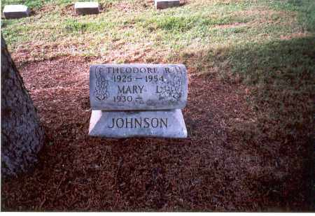 JOHNSON, THEODORE R. - Franklin County, Ohio | THEODORE R. JOHNSON - Ohio Gravestone Photos