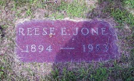 JONES, REESE E. - Franklin County, Ohio | REESE E. JONES - Ohio Gravestone Photos