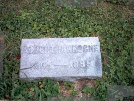 KNOCHE, ALBERT - Franklin County, Ohio | ALBERT KNOCHE - Ohio Gravestone Photos