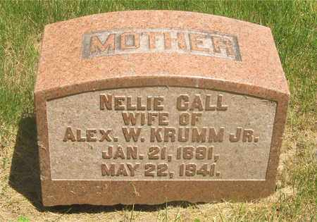 CALL KRUMM, NELLIE - Franklin County, Ohio | NELLIE CALL KRUMM - Ohio Gravestone Photos