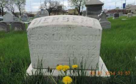LANGSTON, HERBERT - Franklin County, Ohio | HERBERT LANGSTON - Ohio Gravestone Photos