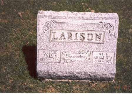 LARISON, ARAMINTA - Franklin County, Ohio | ARAMINTA LARISON - Ohio Gravestone Photos