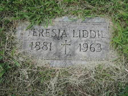 LIDDIL, TERESIA - Franklin County, Ohio | TERESIA LIDDIL - Ohio Gravestone Photos
