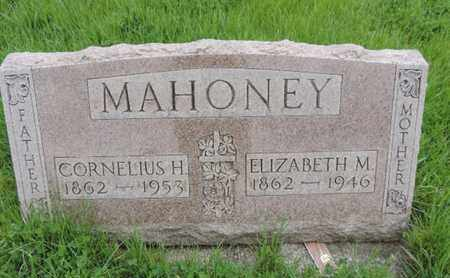 MAHONEY, CORNELIUS H - Franklin County, Ohio | CORNELIUS H MAHONEY - Ohio Gravestone Photos