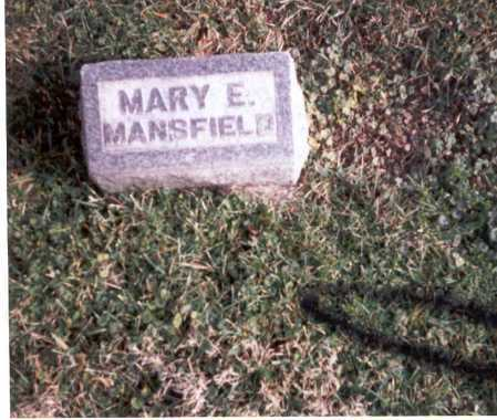 MANSFIELD, MARY - Franklin County, Ohio | MARY MANSFIELD - Ohio Gravestone Photos