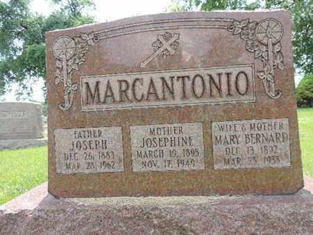 MARCANTONIO, MARY - Franklin County, Ohio | MARY MARCANTONIO - Ohio Gravestone Photos