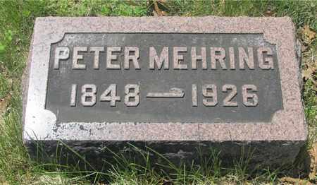 MEHRING, PETER - Franklin County, Ohio | PETER MEHRING - Ohio Gravestone Photos