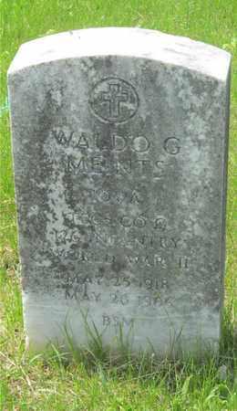 MEINTS, WALDO G. - Franklin County, Ohio | WALDO G. MEINTS - Ohio Gravestone Photos