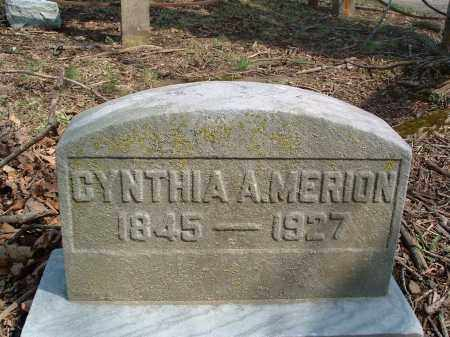 SHERMAN MERION, CYNTHIA ANN - Franklin County, Ohio | CYNTHIA ANN SHERMAN MERION - Ohio Gravestone Photos