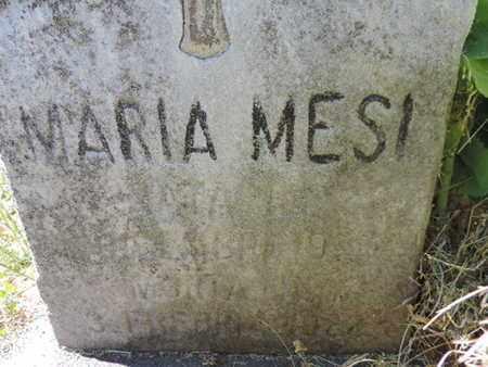 MESI, MARIA - Franklin County, Ohio | MARIA MESI - Ohio Gravestone Photos