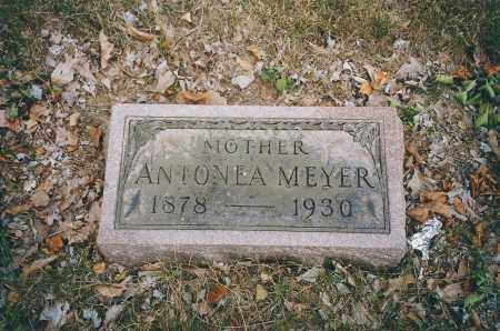 MEYER, ANTONEA - Franklin County, Ohio | ANTONEA MEYER - Ohio Gravestone Photos
