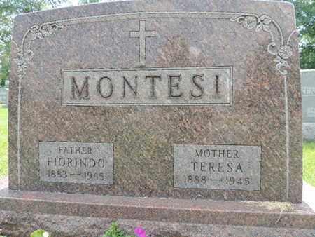 MONTESI, TERESA - Franklin County, Ohio | TERESA MONTESI - Ohio Gravestone Photos