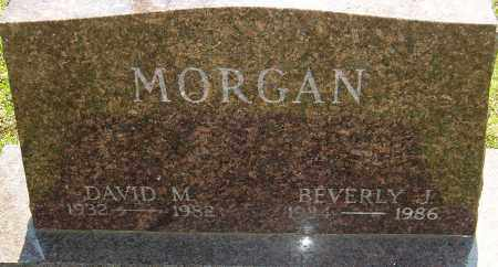 MORGAN, DAVID M - Franklin County, Ohio | DAVID M MORGAN - Ohio Gravestone Photos