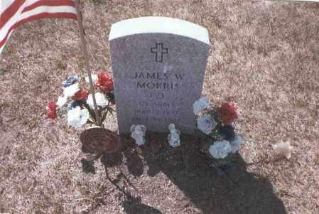 MORRIS, JAMES WILLIAM - Franklin County, Ohio | JAMES WILLIAM MORRIS - Ohio Gravestone Photos