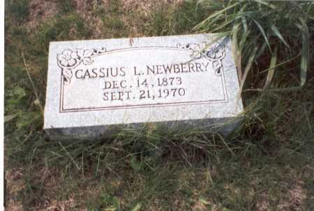 NEWBERRY, CASSIUS L. - Franklin County, Ohio   CASSIUS L. NEWBERRY - Ohio Gravestone Photos