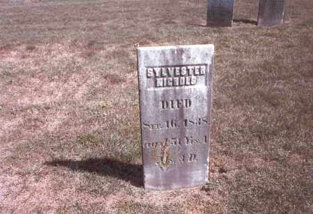 NICHOLS, SYLVESTER - Franklin County, Ohio | SYLVESTER NICHOLS - Ohio Gravestone Photos