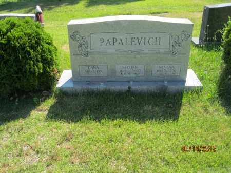 PAPALEVICH, STOJAN - Franklin County, Ohio | STOJAN PAPALEVICH - Ohio Gravestone Photos